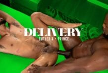 Delivery: Cutler X & Prince (Bareback)